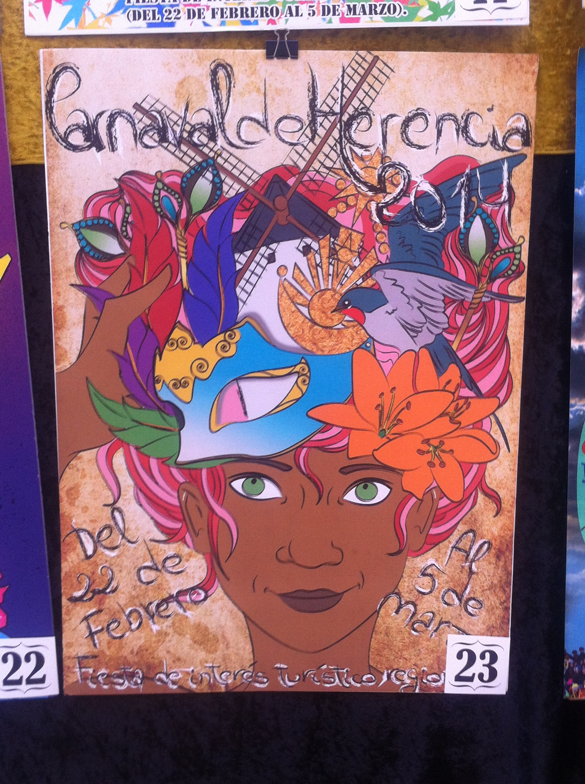 Concurso Carteles Carnaval 2014 (23)